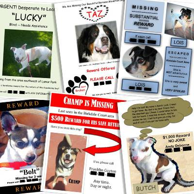 Missing pets bulletin board