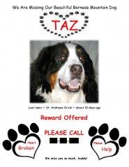 Taz-Wilson-missing.jpg
