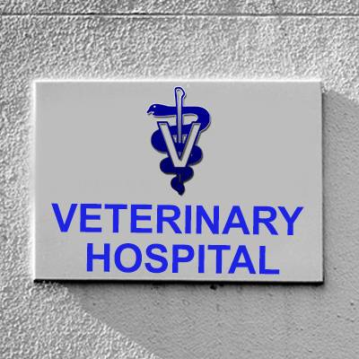 Veterinarian canvass